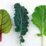 |⇨ Polpettine di verdura