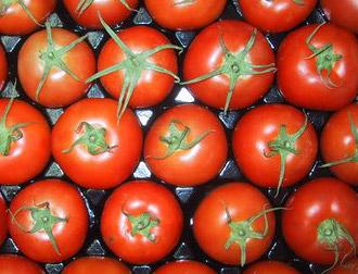 Seitan al pomodoro